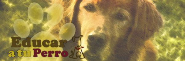 Lenguaje canino